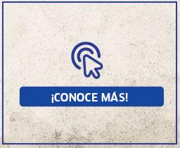 Conoce mas